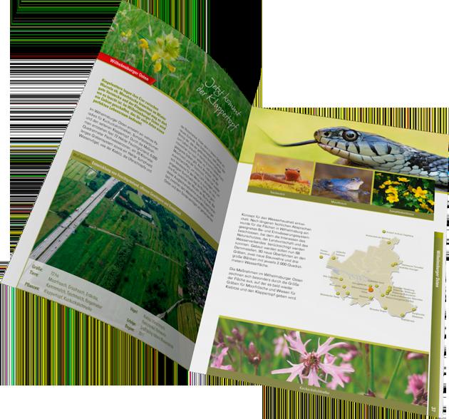 Umweltgrafik: Broschüre