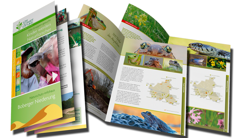 Umweltgrafik: Printdesign